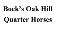 Bock's Oak Hill Quarter Horses