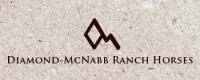 RSNC FutMatLogos_McNabb
